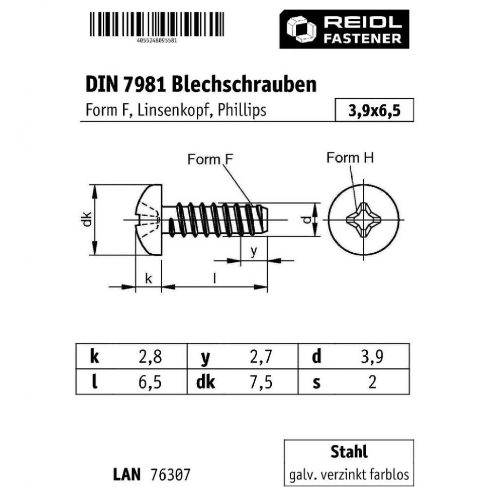 10x DIN 7981 Linsenkopf-Blechschrauben Kreuzschlitz Phillips Form C 5.5 x 60 A2