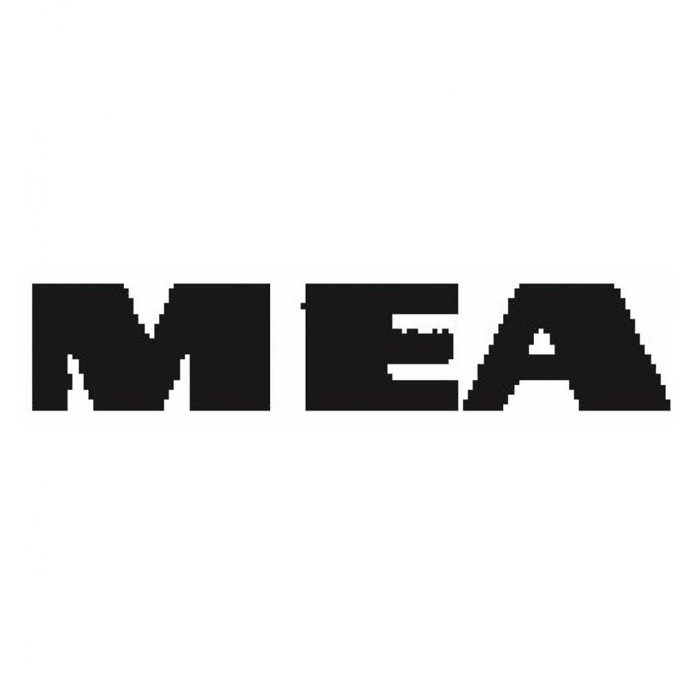 ohne Zarge MEA® Gitterrost weit 30X30mm 80 x 50 cm